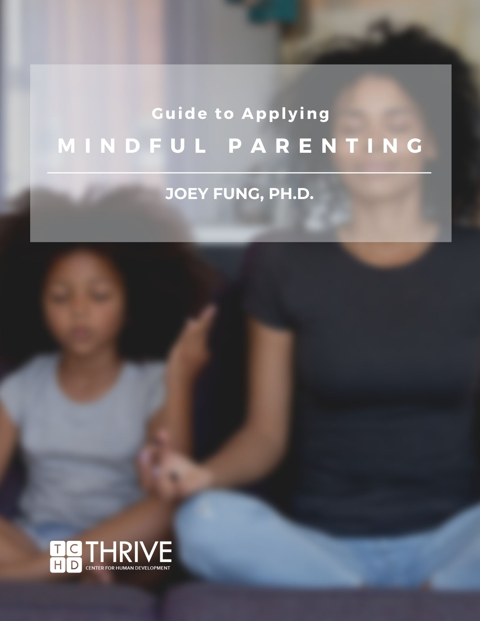 Guide to Applying Mindful Parenting cover
