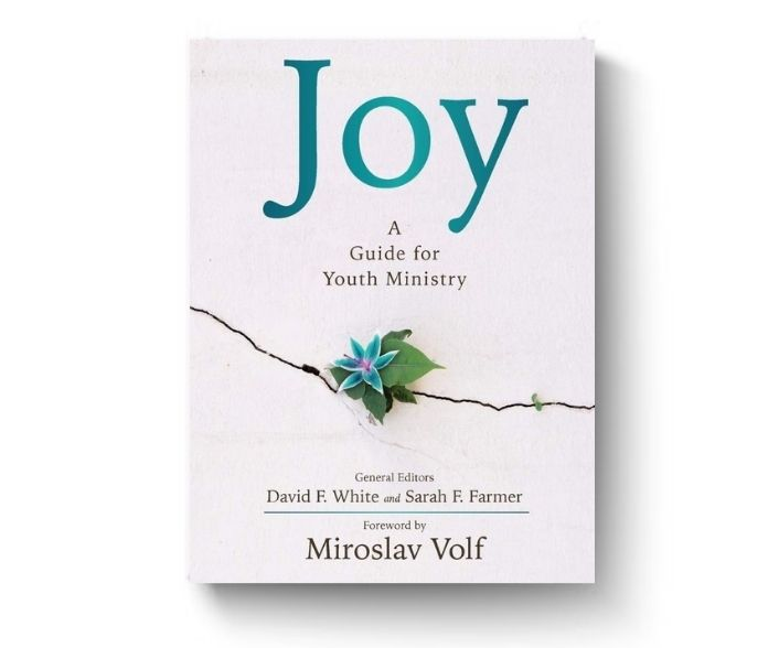 Joy Guide for Youth Ministry book cover